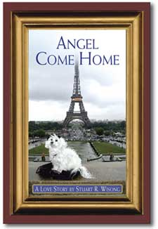 Angel Come Home by Stuart R wisong