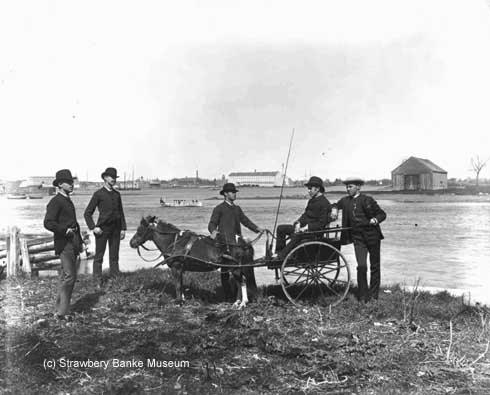 Five young men on PIscataqua River in 1886 posing with pony cart / Strawbery Banke Museum Archives. All rights reserved