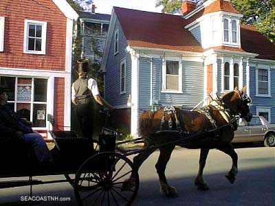 Horse and carriage in Lunenburg, NS . SeacoastNH.com