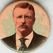 Roosevelt Campaign Button