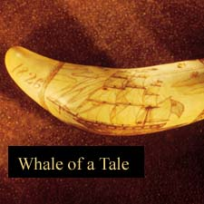 Portsmouth NH Whaling Diary Excpert