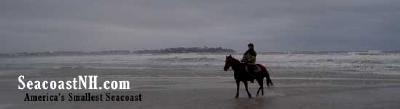 Horses on Hampton Beach /JDR