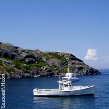 Manana Island from Monhegan / SeacoastNH.com photo
